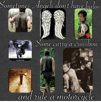 Memes, Angel, and Angels: Sometimes Angels dont have halos  ome catty a ciossbow  Avenging Angel  and ride a motorcycle That's our Daryl ! ~kathy