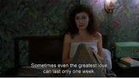 happy friday! [Movie: Mystery Train]: Sometimes even the greatest love  can last only one week happy friday! [Movie: Mystery Train]