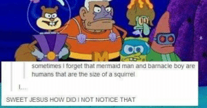 Barnacle boy and mermaid man.: sometimes forget that mermaid man and barnacle boy are  humans that are the size of a squirrel  SWEET JESUS HOW DID INOT NOTICE THAT Barnacle boy and mermaid man.