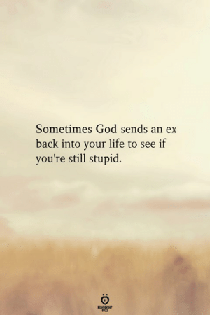 God, Life, and Back: Sometimes God sends an ex  back into your life to see if  you're still stupid.