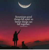 Beautiful, Fall, and Love: Sometimes good  things fall apart so  better things can  fall together.  Peaceful Diaries 🙏🏼 ✨ . ❤️love. Flow. Serve 🙏🏼 . . . . wordsdoinspire wordsoftheday buddha higherawakening highervibrations higherpower kindness thirdeye pressure collors stars universe betterlife vibrations loveandlight beautiful magic love healing adventure peace yourdreams signs feelings affirmations