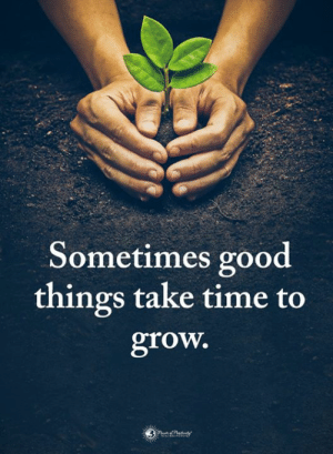 Memes, Good, and Time: Sometimes good  things take time to  grow