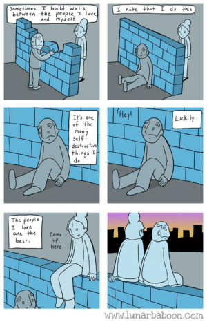 walls: Sometimes I build wa lls  I hate that L do this  between the People I love  and myself  He  It's one  of the  man  Self  destroctive  things 1  do  Luckil  The people  L love  are theCome  best  UP  here.  www.lunarbaboon.com walls