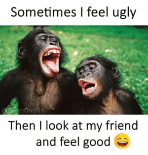 Not that bad: Sometimes I feel ugly  Then l look at my friend  and feel good Not that bad