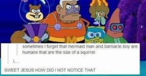 barnacle boy: sometimes I forget that mermaid man and barnacle boy are  humans that are the size of a squirrel  SWEET JESUS HOW DID I NOT NOTICE THAT