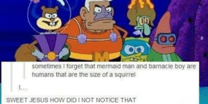 Mind Blown: sometimes I forget that mermaid man and barnacle boy are  humans that are the size of a squirrel  SWEET JESUS HOW DID I NOT NOTICE THAT Mind Blown