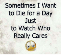 Sometimes I Want  to Die for a Day  Just  to Watch Who  Really Cares