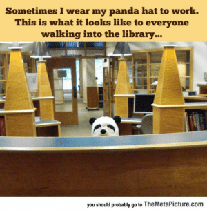 awesomesthesia:  Panda Hat: Sometimes I wear my panda hat to work.  This is what it looks like to everyone  walking into the library...  you should probably go to TheMetaPicture.com awesomesthesia:  Panda Hat
