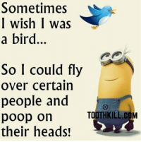 Minion Quote Of The Day: Sometimes  I wish I was  a bird...  So I could fly  over certain  people and  TOOTHKILL.C  COM  poop on  their heads! Minion Quote Of The Day