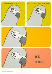 Mad: sometimes i'm mad.  but sometimes i'm not.  a S  mad.  Source: beakfreaks