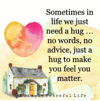 Advice, Life, and Memes: Sometimes in  life we just  need a hug  no words, no  advice, just a  hug to make  you feel you  matter.  impPeà ceful Life
