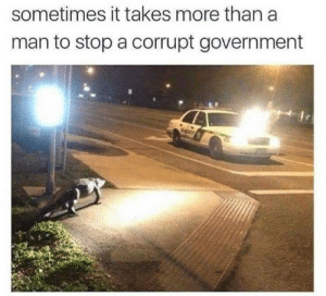 Florida Man, Tumblr, and Blog: sometimes it takes more than a  man to stop a corrupt government corg-sidhe: thats him. Florida man