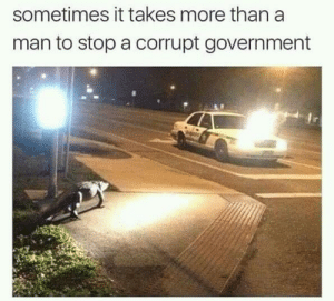 Yeah, Government, and Man: sometimes it takes more than a  man to stop a corrupt government oh yeah yeah oh yeah