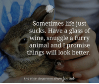 Best. Advice. Ever.: Sometimes life just  sucks. Have a glass of  Wine, snuggle a furry  animal and I promise  things will look better.  the ellen degeneres show  an club Best. Advice. Ever.