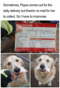 Mail, Her, and Post: Sometimes, Pippa comes out for the  daily delivery but there's no mail for her  to collect. So I have to improvise  have mail  ORI  For  POST
