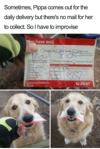 <p>You can tell she took it so gently 💚</p>: Sometimes, Pippa comes out for the  daily delivery but there's no mail for her  to collect. So I have to improvise  have mai  ge parcels)  Charges to pay  ovr the cou  during businesshous  For ePaedentty on deivery  口Only adressee ancolct or!  Anote persoancolect  POST <p>You can tell she took it so gently 💚</p>