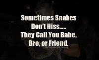 hiss: Sometimes Snakes  Don't Hiss.....  They Call You Babe,  Bro, or Friend.  tb/me
