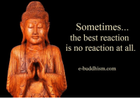 Best Reaction: Sometimes.  the best reaction  is no reaction at all.  e-buddhism com