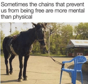 You're capable of anything you desire: Sometimes the chains that prevent  us from being free are more mental  than physical You're capable of anything you desire