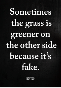 <3: Sometimes  the grass is  greener on  the other side  because it's  fake  Lessons Taught  ByLIFE <3