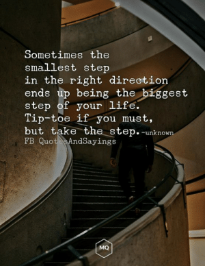 Life, Memes, and 🤖: Sometimes the  smallest step  in the right direction  ends up being the biggest  step of your life.  Tip-toe if you must,  but take the step. -unknown  FB Quot e AndSayings  MQ