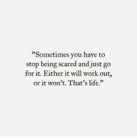 "Life, Work, and Will: ""Sometimes vou have to  stop being scared and just go  for it. Either it will work out,  or it won't. That's life.""  25"