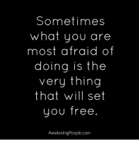 Afraidness: Sometimes  what you are  most afraid of  doing is the  very thing  that will set  YOU Tree  AwakeningPeople.com