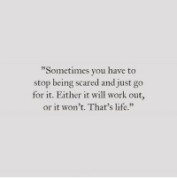 """Being Scared: """"Sometimes you have to  stop being scared and just go  for it. Either it will work out,  or it won't. That's fe.  25"""