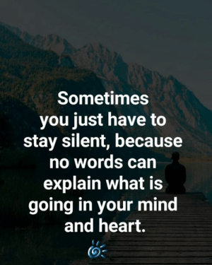 💕❤️: Sometimes  you just have to  stay silent, because  no words can  explain what is  going in your mind  and heart. 💕❤️