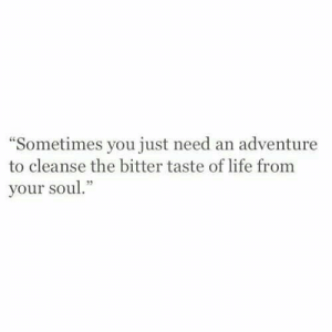 """Cleanse: Sometimes you just need an adventure  to cleanse the bitter taste of life from  your soul."""""""