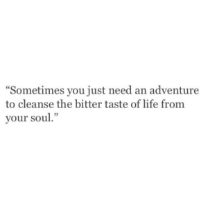"""Cleanse: """"Sometimes you just need an adventure  to cleanse the bitter taste of life from  your soul."""""""