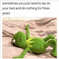 Funny, Three, and You: sometimes you just need to lay on  your bed and do nothing for three  years 👀