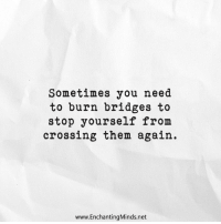 Net, Them, and You: Sometimes you need  to burn bridges to  stop yourself from  crossing them again.  www.EnchantingMinds.net