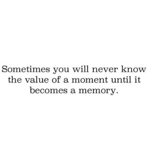 Never, Net, and Memory: Sometimes you will never know  the value of a moment until it  becomes a memory. https://iglovequotes.net/