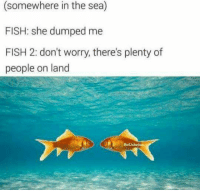 Parallel universe never disappoints: (somewhere in the sea)  FISH: she dumped me  FISH 2: don't worry, there's plenty of  people on land  Ben  BadJokeB Parallel universe never disappoints