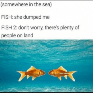 Dank, Memes, and Target: (somewhere in the sea)  FISH: she dumped me  FISH 2: don't worry, there's plenty of  people on land  BadJokeBen me irl by cig_sg_throwaway FOLLOW 4 MORE MEMES.
