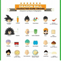 Bulma, Memes, and Trunks: son goku  RADITZ  TRUNKS  YAMCHA  DRAGON BALL  CHARACTER NAME ORIGINS  Infographic by House of Infographics  GOHAN  CARROT  VEGETABLE  VEGETA  RADISH  NAPPA NAPA CABBAGE  PAN  TRUNKS  KRILLIN  BULMA  BLOOMERS  YUM CHA  TIEN SHINHAN  TIEN CHUN FAN  CHLAOTZU  dim sum chinese  GOHAN  rice/meal Apanese  PAN  broad japanese  KURI  chestnut -iapanese  JIAOZI  dumpling chinese . Creator ( IDK ) Admin = ( @mnajafkhan1) & ( @animeigirls721) . . .. anime art dragonball dragonballz dragonballgt dragonballkai dragonballsuper supersaiyan supersaiyan2 supersaiyan3 supersaiyan4 blackgoku fanart aralechan arale femalebroly clowngod picolo supersaiyanblue ssjb ssjbluegoku