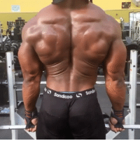 Beast mode activated! TAG someone who can do this killer superset🔥Follow (@gym.starz) - - Credit @armz_korleone Bodybuilder physique muscle gymlife: Sonda  Sondicoo  S Beast mode activated! TAG someone who can do this killer superset🔥Follow (@gym.starz) - - Credit @armz_korleone Bodybuilder physique muscle gymlife