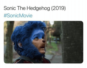 Let the sonic memes begin: Sonic The Hedgehog (2019)  Let the sonic memes begin