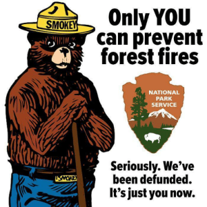 Preventional: SOnly YOU  can prevent  forest fires  NATIONAL  PARK  SERVICE  Seriouslv. We've  been defunded.  It's just you now.