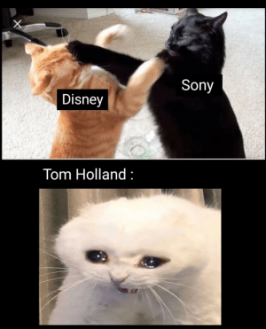 Its like that : Sony  Disney  Tom Holland Its like that