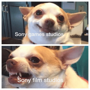 I AM FRUSTRATION by mansonfamily MORE MEMES: Sony games studios  Sony film studios I AM FRUSTRATION by mansonfamily MORE MEMES