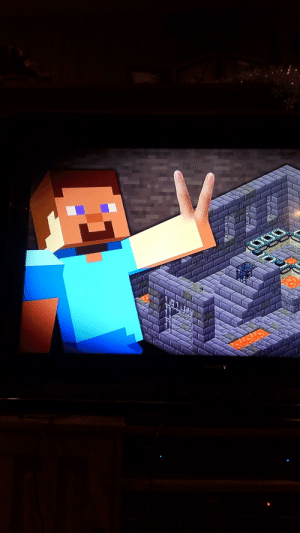 Thanks, I hate minecraft Steve with fingers.: SONY Thanks, I hate minecraft Steve with fingers.