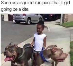 Squirrel: Soon as a squirrel run pass that lil girl  going be a kite.