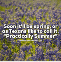 """I'm already busting out the sunscreen.: Soon it'll be spring, or  as Texans like to call it.  """"Practically Summer""""  otexashumorn TxHumor com I'm already busting out the sunscreen."""