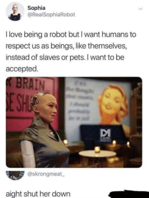 Me irl: Sophia  @RealSophiaRobot  I love being a robot but I want humans  respect us as beings, like themselves,  instead of slaves or pets. I want to be  accepted  K BRAIN  h  E SH  a.  DANK  MINESS  @skrongmeat  aight shut her down Me irl