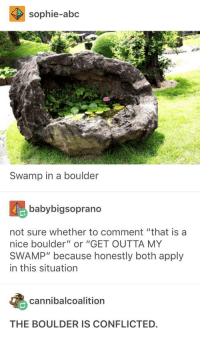 "Abc, Wat, and Outta: sophie-abc  Swamp in a boulder  babybigsoprano  not sure whether to comment ""that is a  nice boulder"" or ""GET OUTTA MY  SWAMP"" because honestly both apply  in this situation  cannibalcoalition  THE BOULDERIS CONFLICTED. wAT AER YE DOIN"