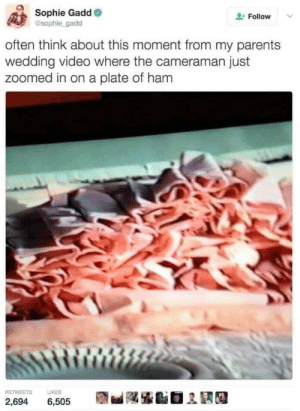 The ham cam: Sophie Gadd  sophie gadd  Follow  often think about this moment from my parents  wedding video where the cameraman just  zoomed in on a plate of ham  RETWEETS  LIKES  2,694  6,505 The ham cam