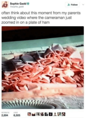 laughoutloud-club:  The ham cam: Sophie Gadd  sophie gadd  Follow  often think about this moment from my parents  wedding video where the cameraman just  zoomed in on a plate of ham  RETWEETS  LIKES  2,694  6,505 laughoutloud-club:  The ham cam