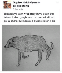 Saw, Record, and Kidd: Sophie Kidd-Myers  Dogspotting  3 hrs  Yesterday I saw what may have been the  fattest italian greyhound on record, didn't  get a photo but here's a quick sketch I did